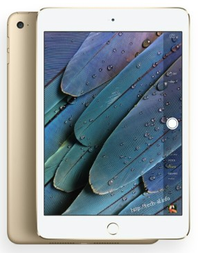 iPad-mini-4-official-05-570